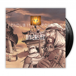 ALBUM Diversité - DOUBLE VINYL/LP